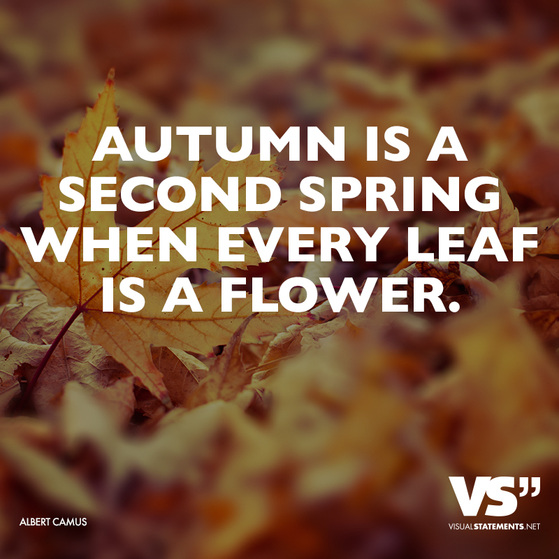 Image Result For Fall In Love Quotes