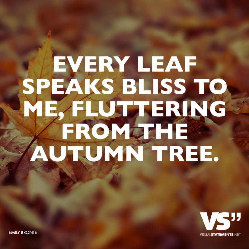 Inspirational Quotes For Cozy Fall Days Prev