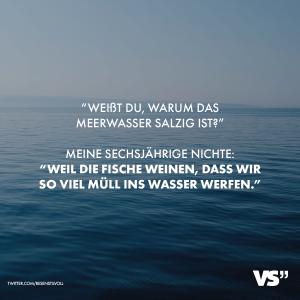 Warum Meerwasser Salzig